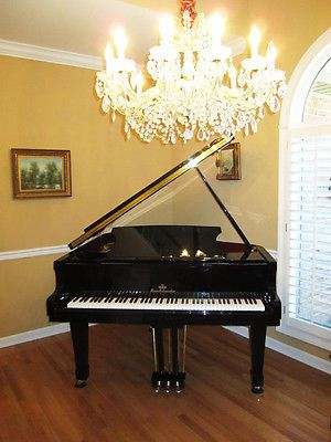 Pristine condition 1 adult  owner Baby grand  piano & Yamaha bench