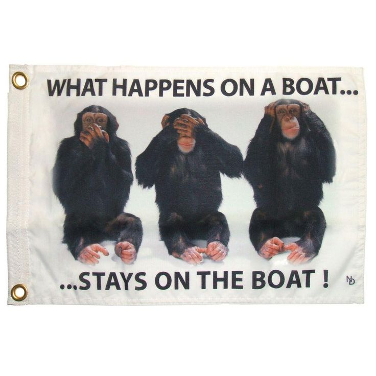 12 in. x 18 in. Stays on Boat Funny Flag
