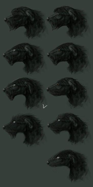 Сначала я хотела сделать все реалистичным, но потом решали стилизовать. Но до этого успела уже морды сделать реалистичные XD Первый поиск формы морды пса. Белые глаза - так как он от 3 лица на себя астрально смотрит, глаза закатаны до белков. В общем надо было переделать стандартную морду к более необычной.