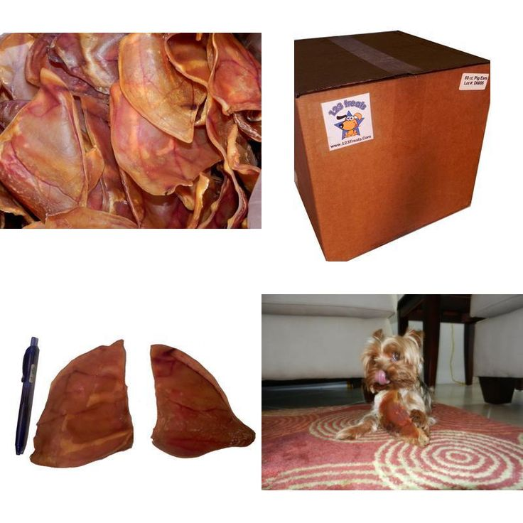 Pig Ears for Dogs Quality Dog Chews 100% Natural Pork Ears for Your Pet 50 Count #123Treats