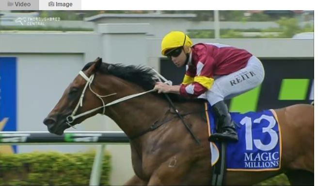 Quackerjack and Meryl booked their field after winning the Randwick and Doomben races. Meryl Is Expected To Perform Even Better. #profitablepunting #Horseracing #bettingonline.