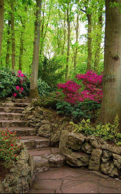 Lovely shade garden!