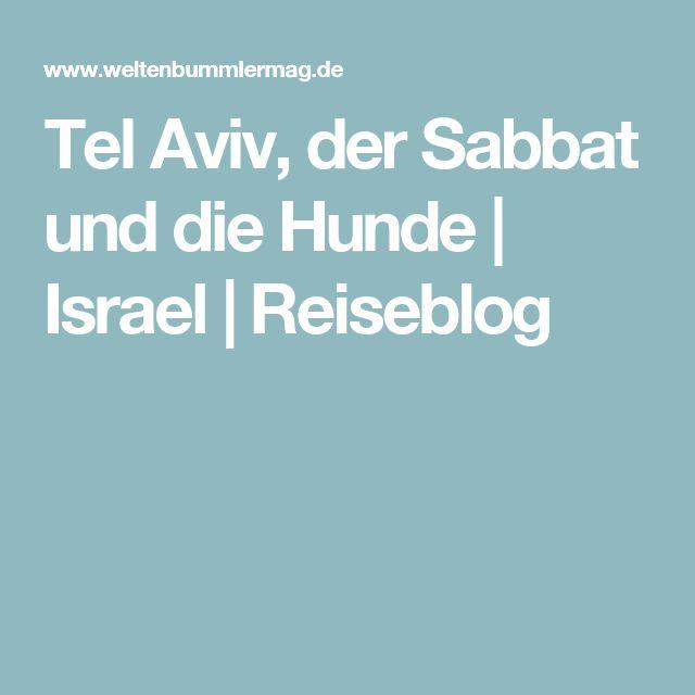 Tel Aviv, der Sabbat und die Hunde   Israel   Reiseblog