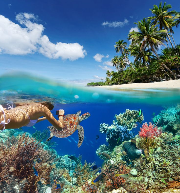 The 57  BEST SNORKELING SPOTS IN THE WORLD http://www.deepbluediving.org/xs-scuba-switch-mask-review/