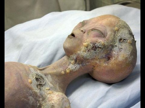 Amazing proof of real Alien on earth.