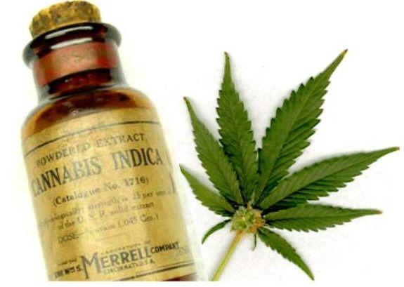 Cannabis Can Help With Arthritis