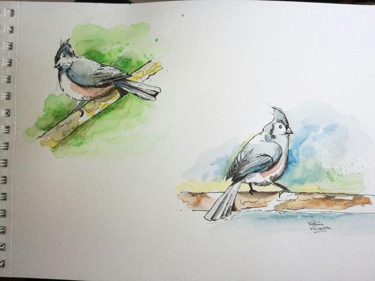My birdie on a tree #watercolour