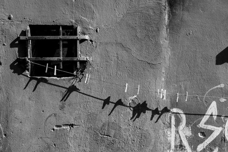 Pin Birds by Altan Biket - Photo 144964707 - 500px