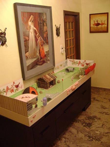 Candy-Cherry_home4 - Guinea Pig Cage Photos