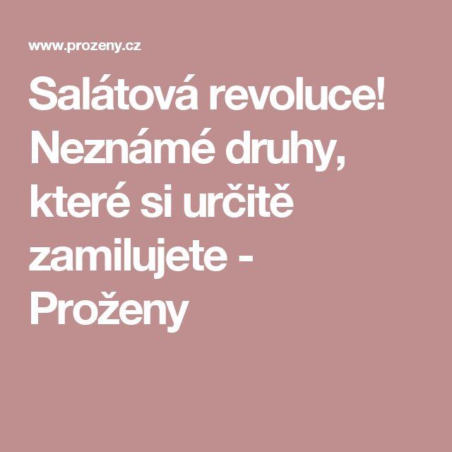 Salátová revoluce! Neznámé druhy, které si určitě zamilujete - Proženy