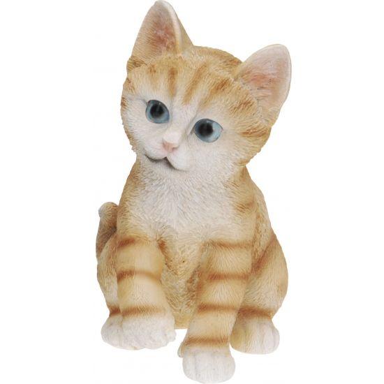 Zittende katten beeldje oranje 19 cm  Zittende katten beeldje oranje 19 cm. Dit katten beeldje is gemaakt van polystone. Enkel geschikt voor binnen gebruik.  EUR 5.99  Meer informatie