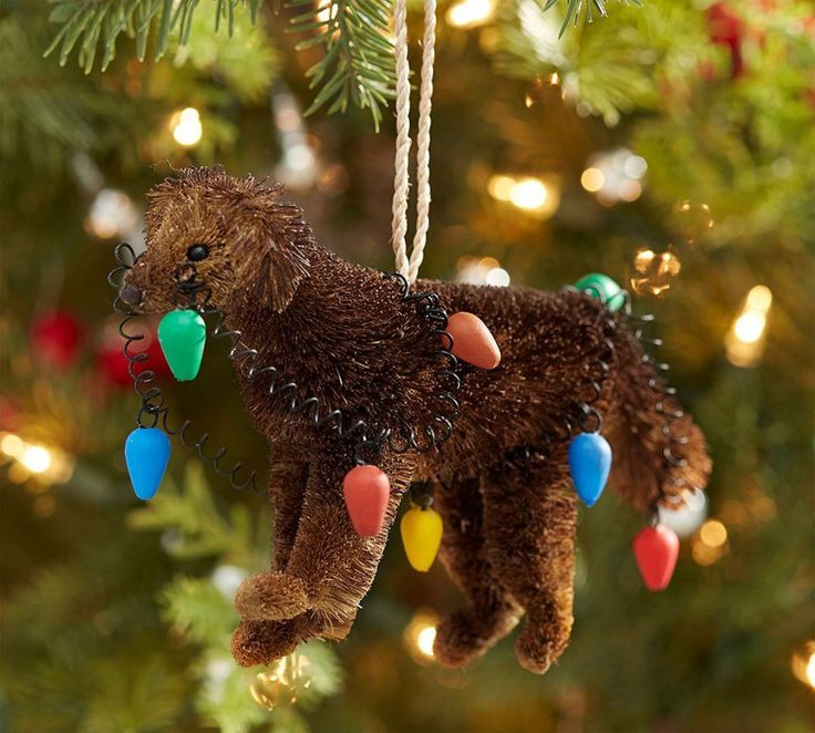 Bottle Brush Chocolate Lab With Lights Ornament 2016