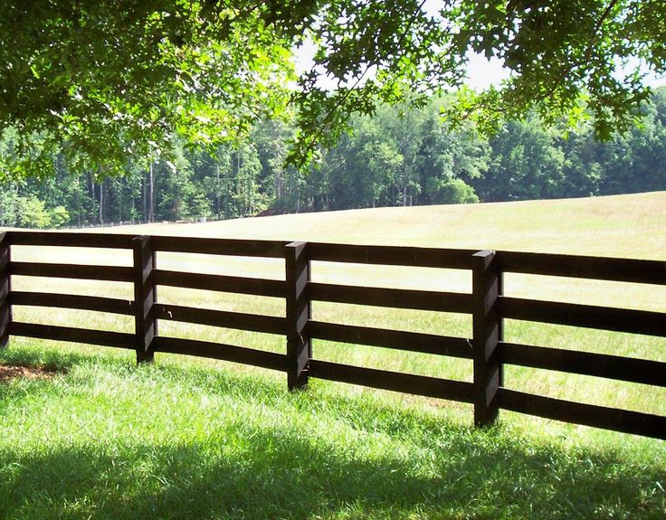 Outdoor wedding reception with horses in a horse pasture for the background.. rustic fence, grass, white tables... :)