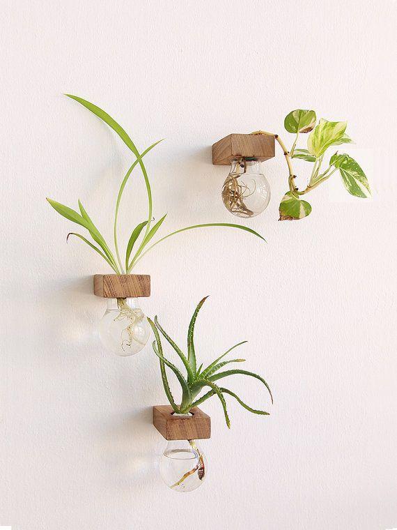 LAMPA II, un set di 3 vasi di lampadina, lampadina di Upcycled e vasi di legno, fatto a mano, legno Upcycled, Eco amichevole regalo, Eco amichevole vaso