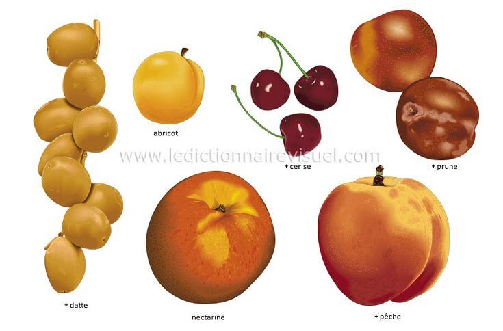 fruits noyau fruits dont la chair plus ou moins juteuse entoure un noyau dur g n ralement. Black Bedroom Furniture Sets. Home Design Ideas
