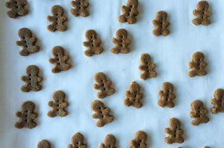 Homemade Teddy Grahams Recipe on Food52 recipe on Food52