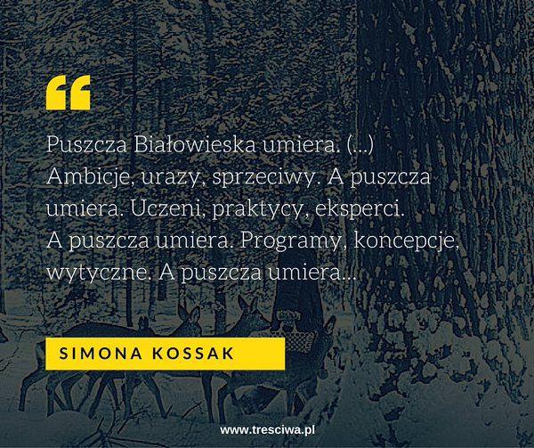 (1) tresciwa.pl (@DudkowskaKafar) | Twitter