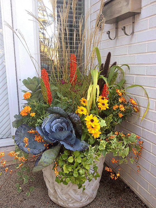 Great fall flower pot mixing grasses, perennials, and fall ...