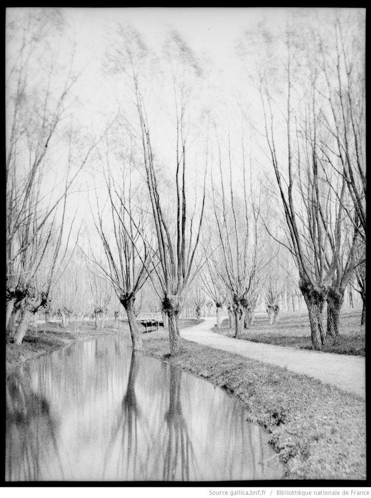 [Lyon, parc de la Tête d'Or, rivière] : [photographie négative] / [Paul Duseigneur]