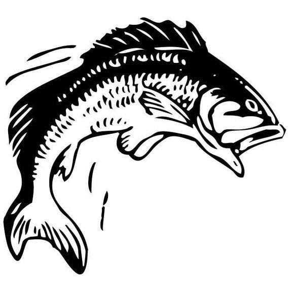 Bass Fishing Fisherman Window Decal Outdoor Indoor Bass Bassfishing Decal Fishtank Fisherman Fishin In 2020 Fish Coloring Page Fish Clipart Fish Silhouette