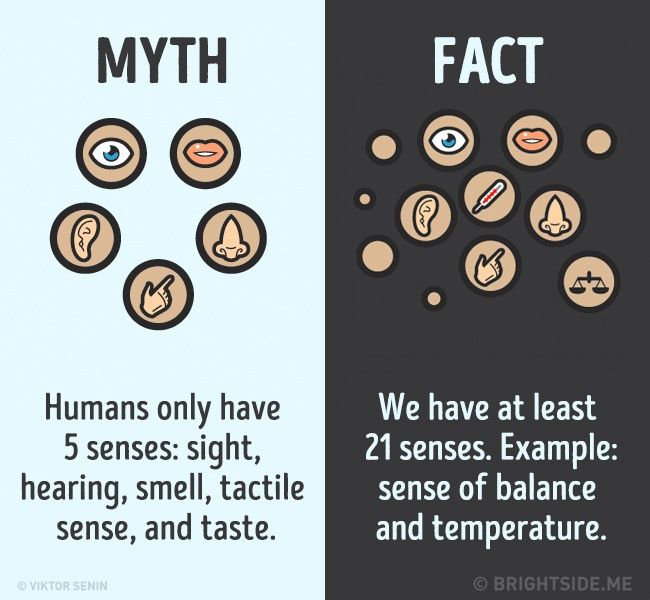 12myths about the human body that weshould forget