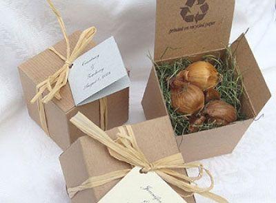 Iris Bulbs For Gift Bag Tennesse State Flower