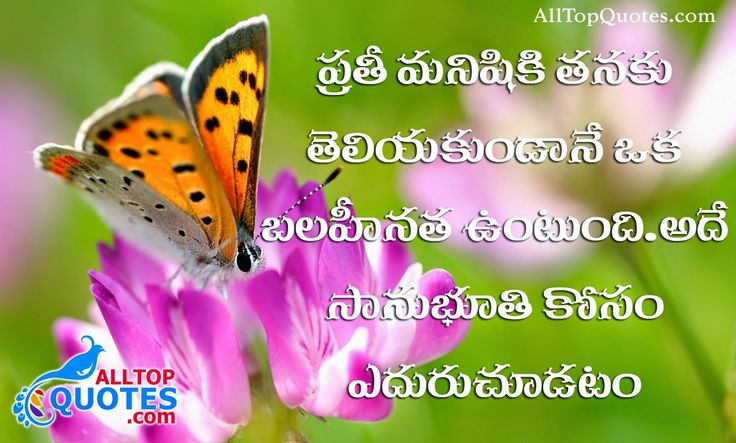 Telugu Comedy Wallpapers With Quotes: Life Inspirational Quotes In Telugu Wallpaper Top Telugu