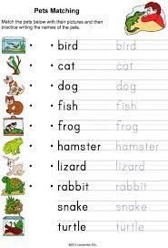 Resultado de imagen para pets animals worksheets