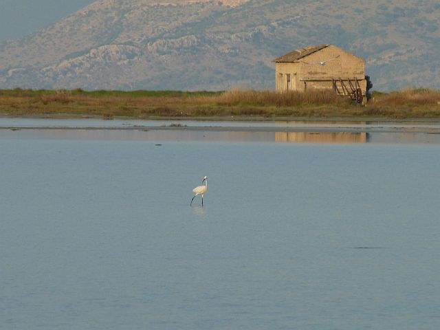 Salt flats at Lefkimmi, Corfu greece - Αναζήτηση Google