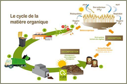 L'économie circulaire se met aux matières organiques avec l'ouverture d'Organic Vallée près de Toulouse cette année. C'est la première fois que ce concept économique s'attaque aux matières organiques.