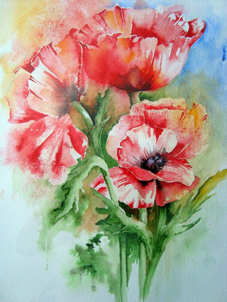Poppies by Yvonne Harry