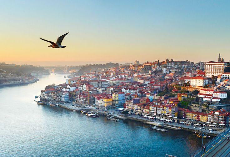 O Porto é, por si só, uma razão para visitar o país. Da eterna cidade invicta, elogia a «beleza decadente» das ruelas e dos recantos do centro histórico, a par das adegas de Vila Nova de Gaia