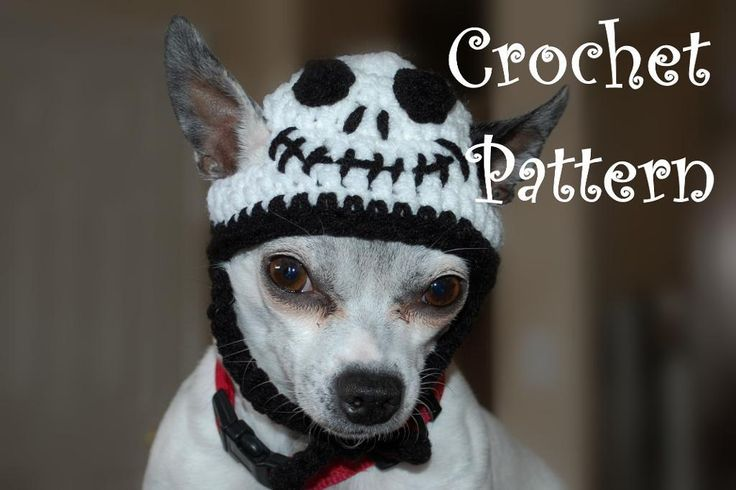Crochet Dog patterns--- Really cute-- Most are not free