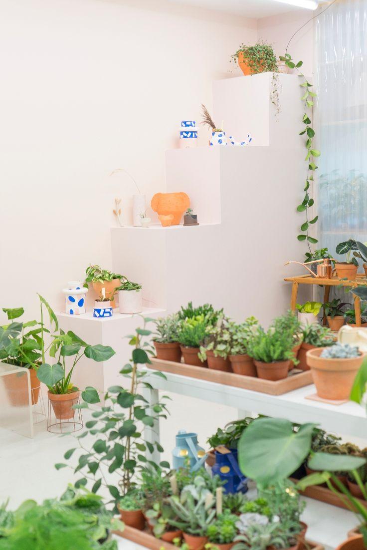 12839 best urban jungle bloggers images on pinterest succulents gardening and house plants. Black Bedroom Furniture Sets. Home Design Ideas