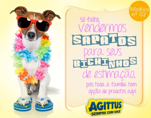 o seu cachorrinho podia muito usar Agittus, não é?!