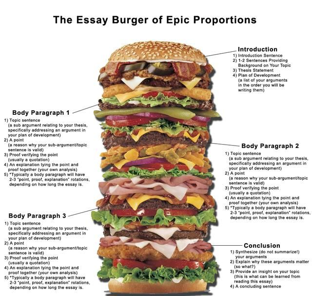 junk food essay introduction Junk food is a pejorative term for food containing a large number of calories from sugar or fat with little fibre, protein, vitamins or minerals the term can also refer to high protein food like meat prepared with saturated fat.