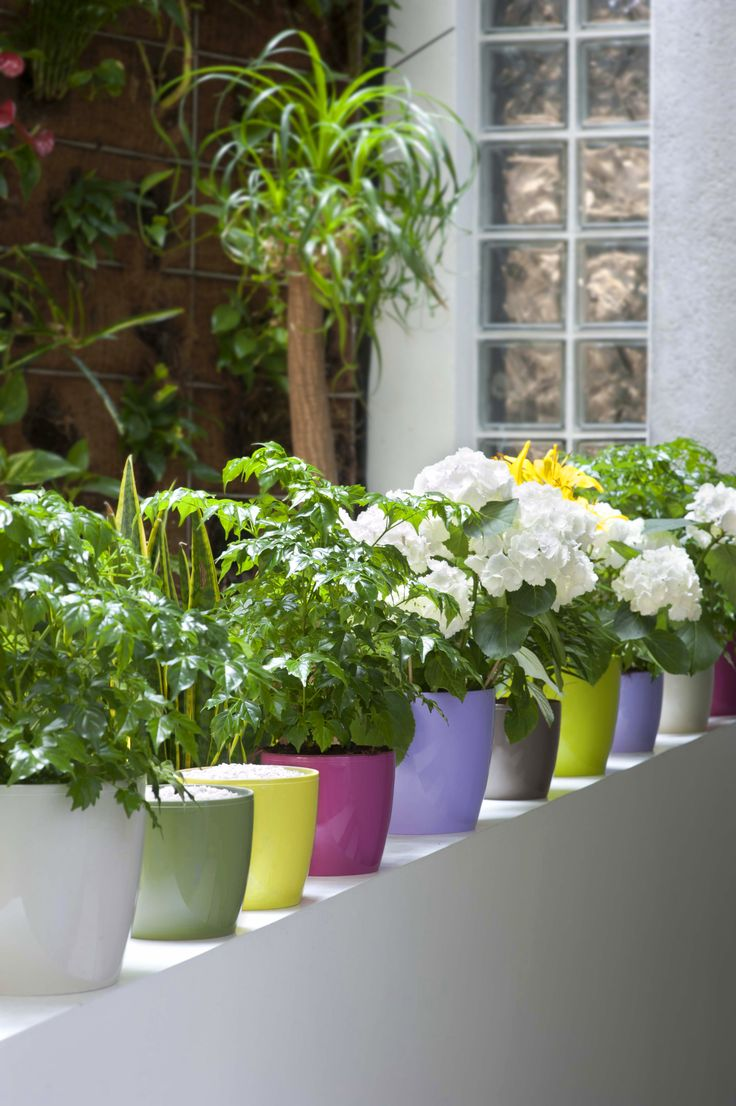 best plastic fantastic lightweight indoor and outdoor plastic  - plastic fiori coloured pots madeira white green yellow pink purple grey