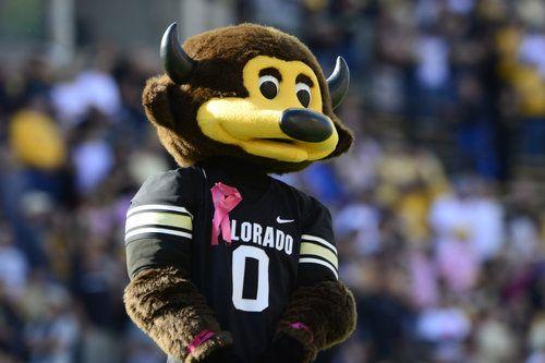 University Of Colorado At Boulder Mascot Ralphie The