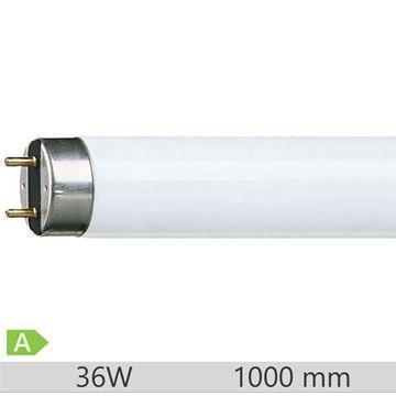 Tub fluorescent T8 Philips Master TL-D Food 1m 36W 79, G13, lumina neutra