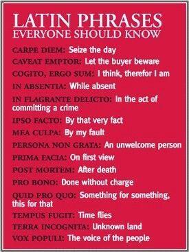 "* Latin phrases everyone should know ""Mea culpa, ecce signum, corpus vile, coram deo..."""