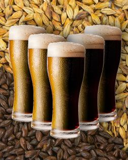 We often assume that darker colored beers are rich, heavy and full of calories. Ashley Routson is here to debunk the myths surrounding dark beers.