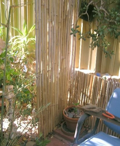 Privacy screen patio photo lisa hallett taylor house Bamboo screens for outdoors