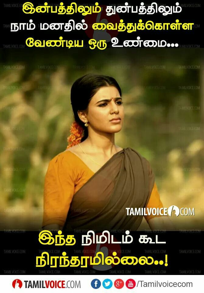 Pin By Senthilmama On S Photo Album Quote Life Facts Voice Quotes Through this post, we are giving you best whatsapp status quotes. voice quotes
