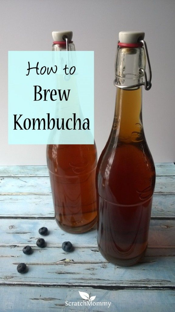 Learning how to brew kombucha is actually easier than it sounds and once you start, you'll be hooked. Goodbye $4 kombucha bottles!
