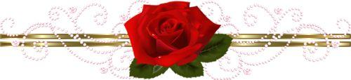 Ya.semira - «roza.png» su Yandex