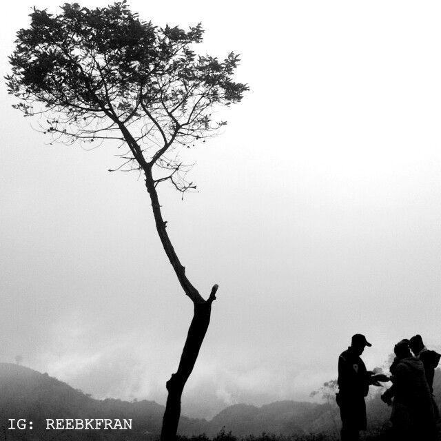 Sabana Mt. Merbabu, Jawa Tengah, Indonesia. Visit Indonesia - Indonesia itu indah.