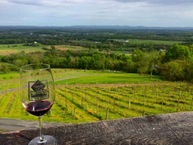 Choose Your Own Adventure in Loudoun County, Virginia