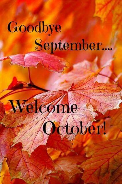 Color Schemes, Autumn Leaves, Autumn Fall, Hello October, September, House,  Seasons, Breakfast Club, Awesome