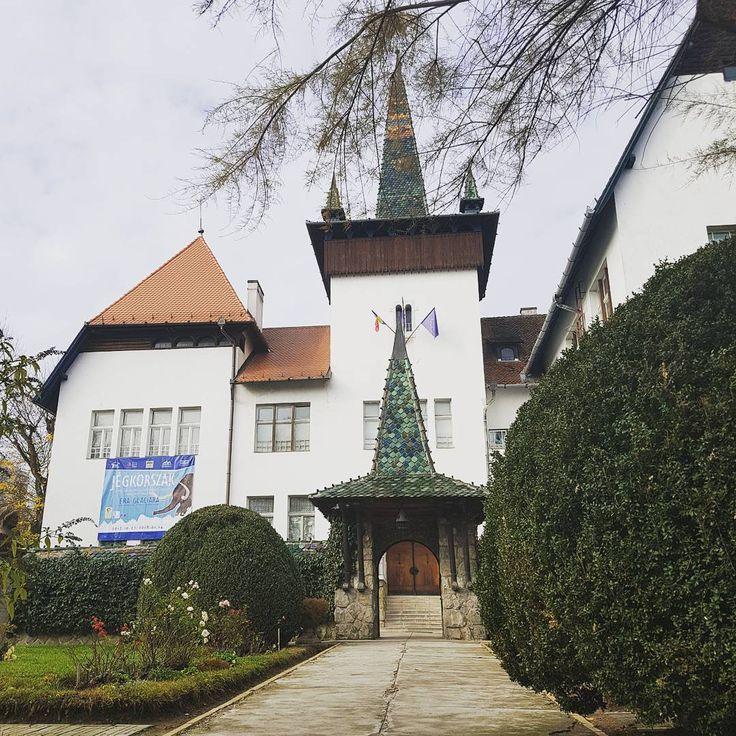 O lecție de istorie și bun gust la Muzeul Secuiesc din Sfântu Gheorghe