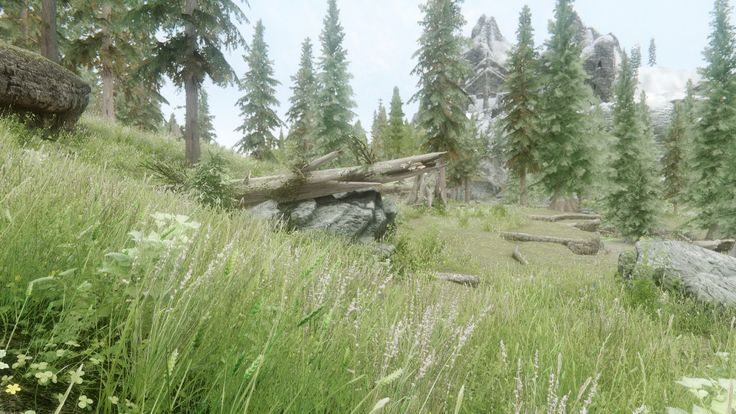 I went for a high fantasy look with no self regard to the brightness or my eyes #games #Skyrim #elderscrolls #BE3 #gaming #videogames #Concours #NGC